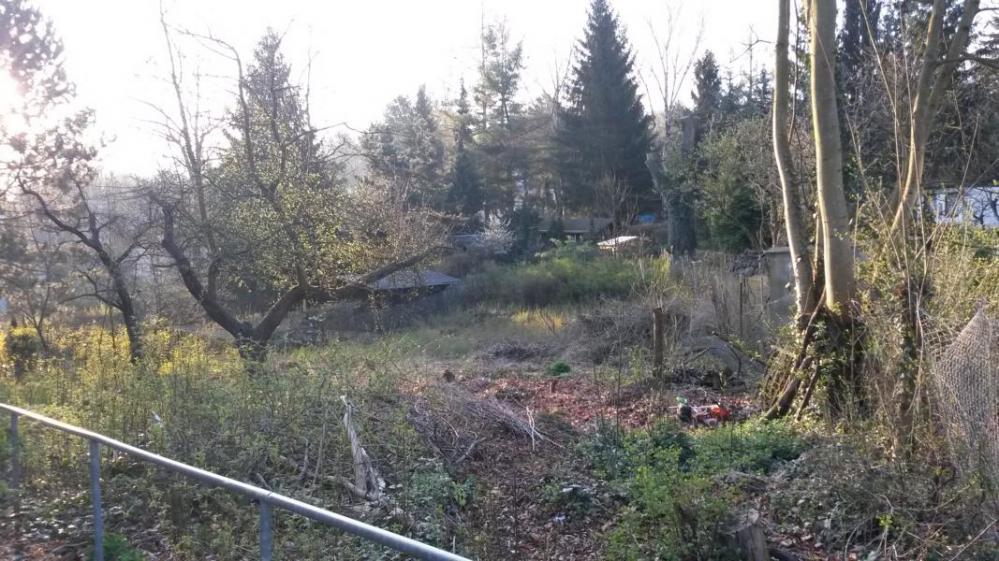 Grundstück vor Beräumung